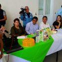 Promueven actividades para celebrar el Dia Mundial de la preservación de la capa de ozono
